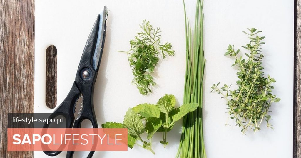 Aromatic herbs and spices, the timeless magic inside our kitchens - Tips