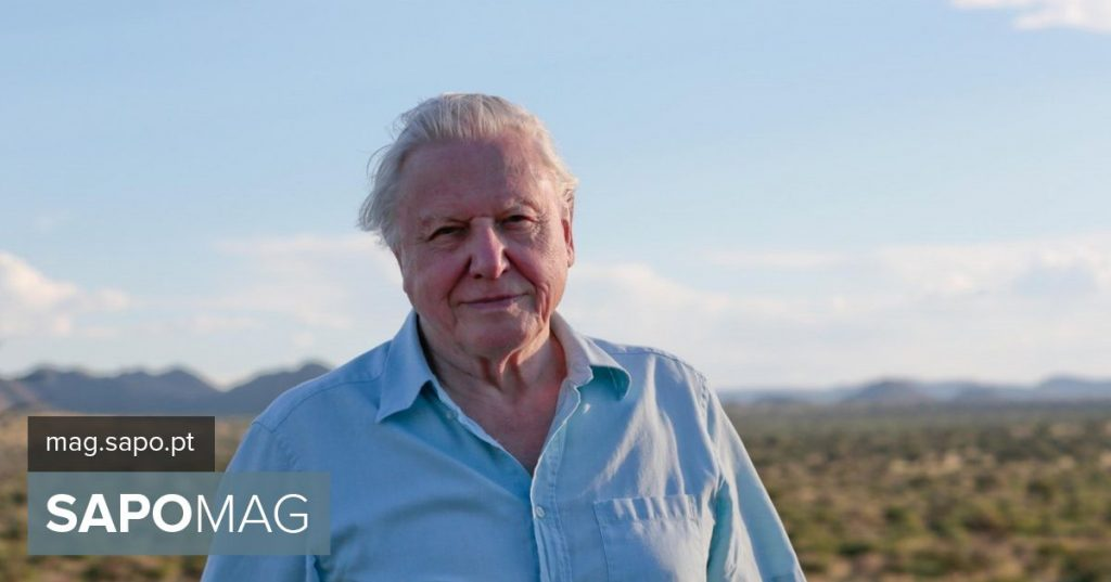 """Ecological """"biopic""""? Britons want movie about the life of David Attenborough"""