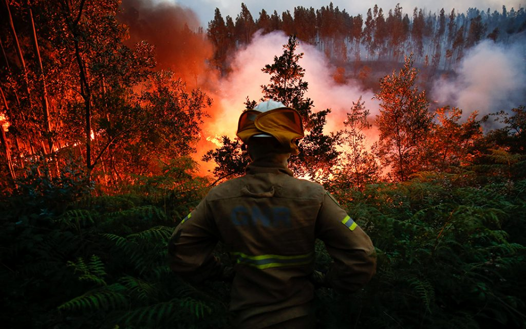 Government pays 5.5 million euros this month to the seriously injured of the fires of 2017 - The Jornal Econômico