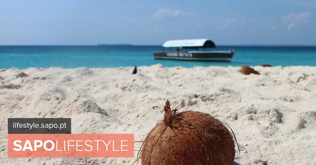 The Coconut and its amazing and tasty browser epic - Actuality