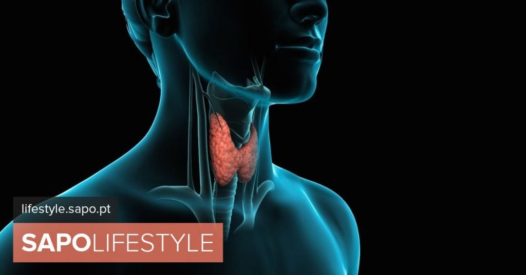 What is the role of the thyroid in the body? - Welfare