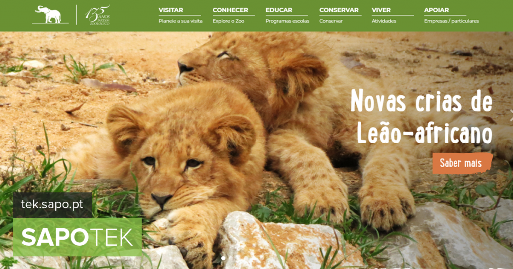 Zoo renovated on the web to show more critters - Today's website