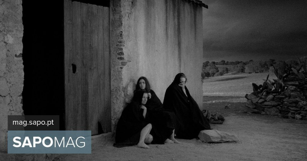 """Badajoz Film Festival opens with """"Raiva"""" and five Portuguese """"short films"""" in competition - Upcoming"""