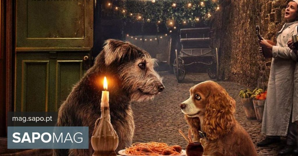 """""""The Lady and the Tramp"""" return to the screens, now in flesh and blood. See the trailer - Actuality"""
