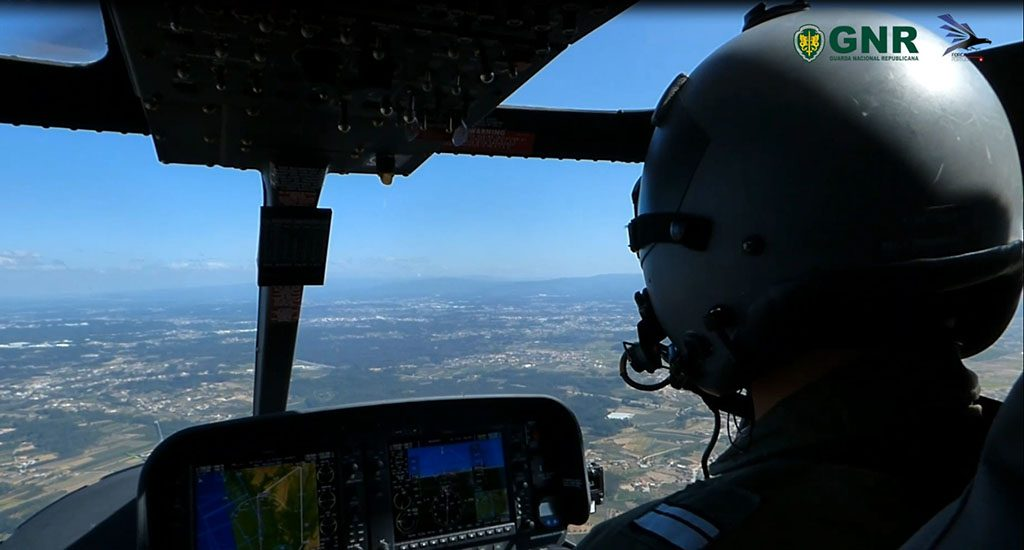 FAP and GNR air patrol detects illegal logging - Jornal diariOnline Southern Region