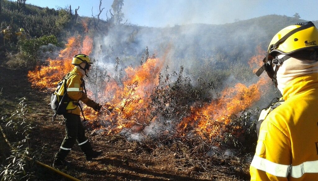 Odemira fire is dominated - Jornal diariOnline Southern Region