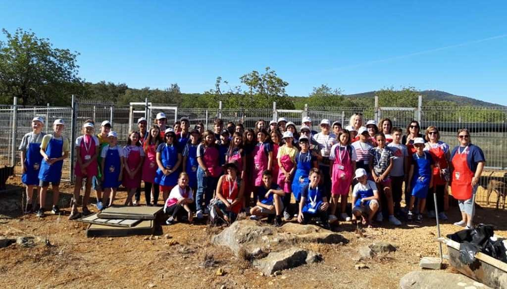 Students and teachers from four European countries visited Algarve - Jornal diariOnline Southern Region