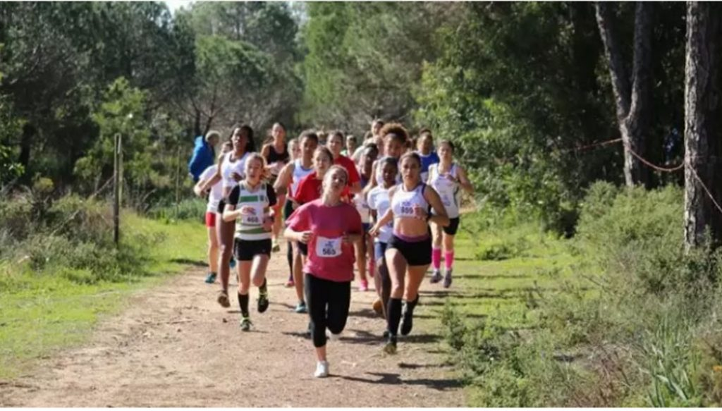 XIX City of Lagos Circuit in Athletics is already punctuating - Jornal diariOnline South Region. Your Algarve and Alentejo Portugal news portal