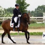 Young Algarve knight participates in the European Dressage Championship