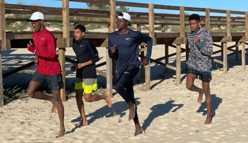 Athletes from Qatar intern in the Algarve with the aim in Tokyo
