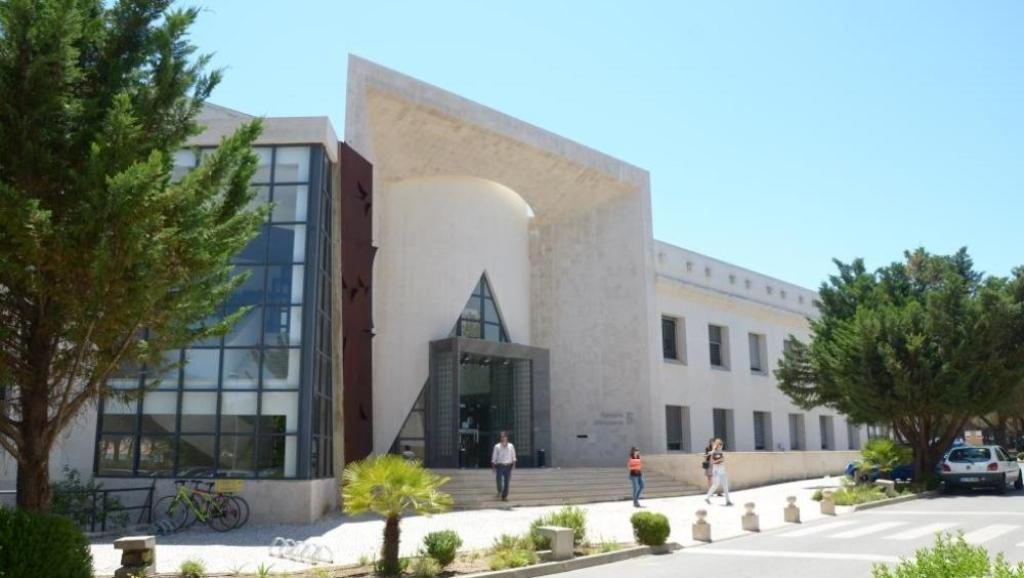 UAlg launches initiative to promote its doctoral students
